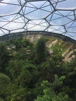 Our Family Day Out At The Eden Project, Cornwall, UK | Thimble End